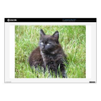 gato - jardín portátil 43,2cm skin