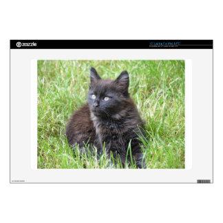 gato - jardín calcomanías para portátiles
