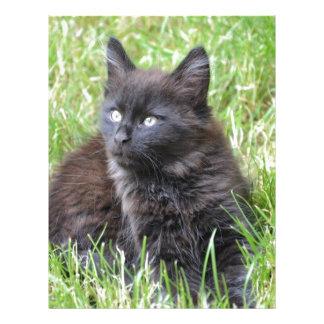 gato - jardín membrete personalizado