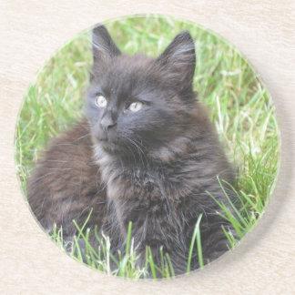 gato - jardín posavasos manualidades