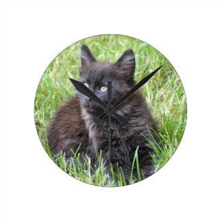 gato - jardín relojes de pared
