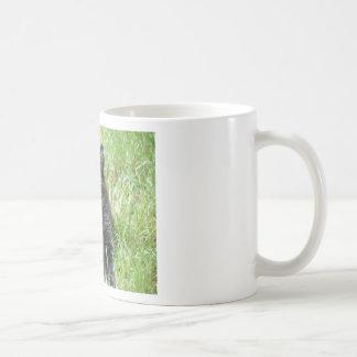 gato - jardín taza de café