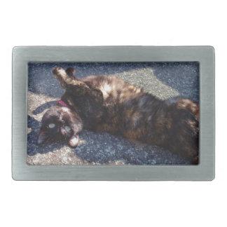 Gato juguetón de la concha hebilla de cinturon rectangular