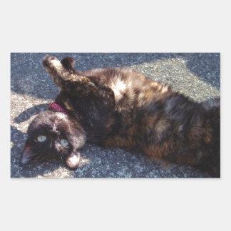 Gato juguetón de la concha pegatina rectangular
