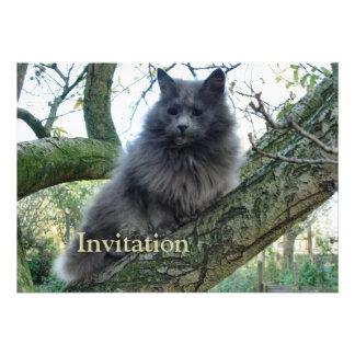 Gato Kyra en un árbol Invitaciones Personales