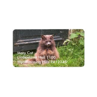 """Gato """"Kyra"""" que se sienta en la hierba Etiquetas De Dirección"""