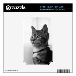 Gato lindo calcomanía para iPod touch 4G