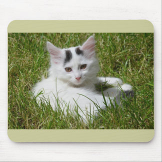 """gato lindo, """"Cleo """" Alfombrilla De Raton"""