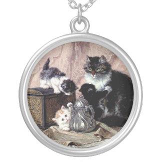 gato lindo de la madre de los gatitos de los gatos collar plateado