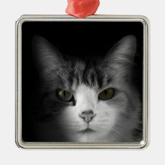 Gato lindo adorno cuadrado plateado