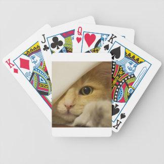 Gato lindo del gatito baraja cartas de poker