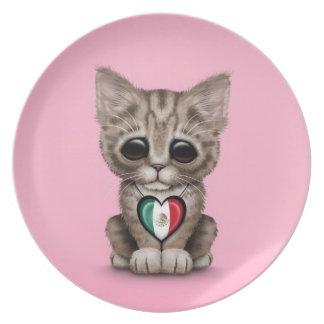 Gato lindo del gatito con el corazón de la bandera platos para fiestas