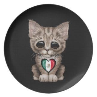 Gato lindo del gatito con el corazón de la bandera plato