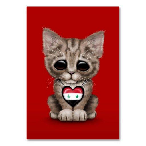 Gato lindo del gatito con el corazón sirio de la b