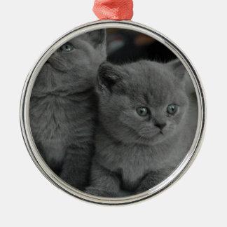 gato lindo del gatito del mascota del ronroneo del adorno redondo plateado