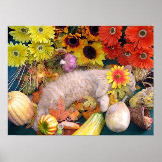Gato lindo del gatito del Tabby, cosecha vegetal c Poster
