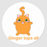 gato lindo del jengibre pegatinas redondas