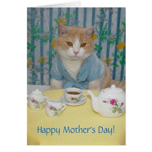 Gato lindo/divertido adaptable felicitación