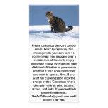 Gato lindo en la nieve tarjeta personal