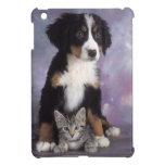Gato lindo en perro en amor iPad mini protectores