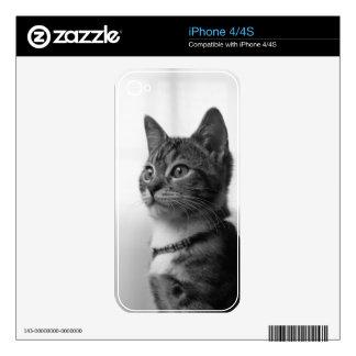 Gato lindo iPhone 4S skin