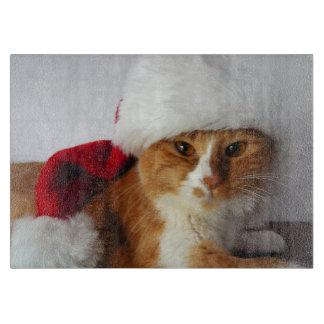 Gato lindo que lleva la tabla de cortar del gorra
