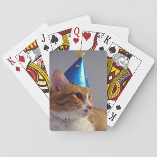 Gato lindo que lleva naipes azules del gorra del f