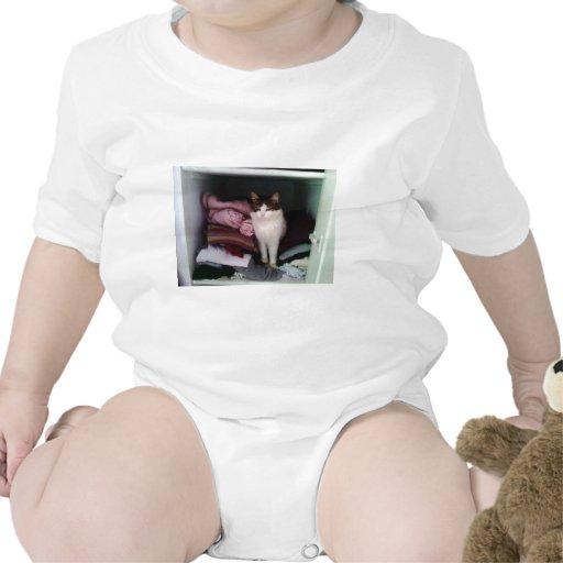 Gato lindo traje de bebé
