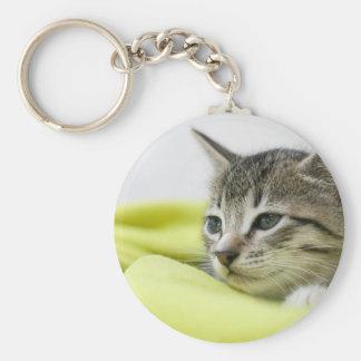Gato Llavero