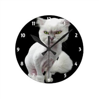 Gato loco avinagrado, lindo 2 relojes