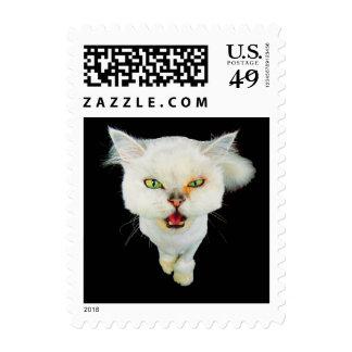 Gato loco avinagrado, lindo sello