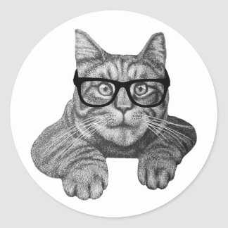 gato loco del friki de la señora del gato pegatina redonda