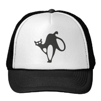 Gato loco gorra