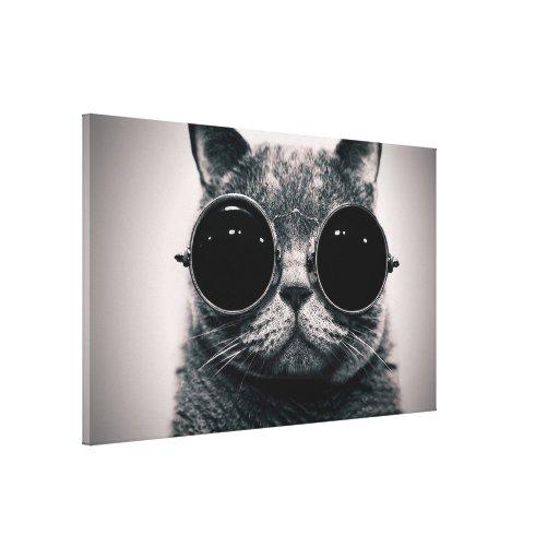 gato lona envuelta para galerias