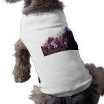 Gato mágico camisa de perrito