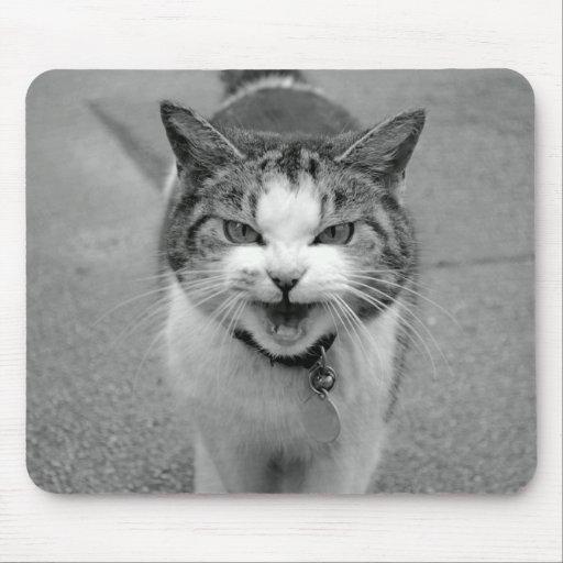 Gato malhumorado Mousepad Alfombrilla De Ratones