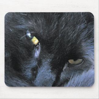 Gato malvado Mousepad
