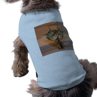 Gato maravilloso playera sin mangas para perro