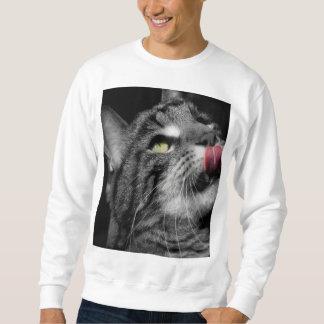 Gato maravilloso suéter