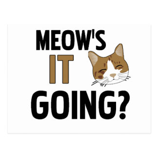 Gato/mascota divertidos tarjetas postales
