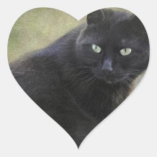 Gato masculino negro con los ojos verdes colcomanias corazon