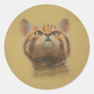Gato montés escocés pegatina redonda