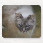 Gato Mousemat de Ragdoll Alfombrilla De Ratón