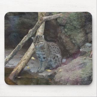 Gato Mousepad de la pesca