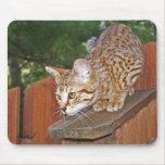 Gato Mousepad de la sabana Alfombrillas De Raton