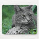 Gato Mousepad de los ojos verdes Tapetes De Raton
