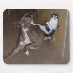 Gato Mousepad de Ninja Tapete De Ratón