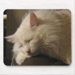 Gato Mousepad del angora el dormir Alfombrilla De Ratones