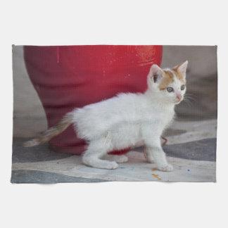 Gato, Mykonos, Grecia Toallas