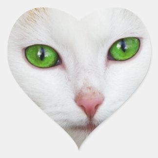 Gato nacional con la piel felina del blanco de la  colcomanias corazon